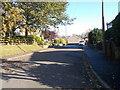 SE0239 : Low Bank Drive - Low Bank Lane by Betty Longbottom