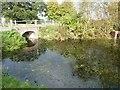 SU8401 : Cutfield Bridge by Rob Farrow