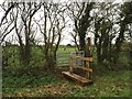 SJ7259 : Ditch bridge and kissing gate off Brook Lane by Jonathan Hutchins