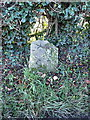 SJ5204 : Milestone at Pitchford Park by Richard Law