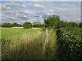 TL3862 : Overgrown footpath from Dry Drayton by Hugh Venables