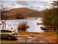 NY3307 : Grasmere Lake from Faeryland by David Dixon