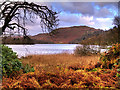NY3306 : Grasmere (Lake) from Red Bank by David Dixon