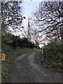 SX8562 : Drive to kennels on Beacon Hill, and communications mast  by David Smith