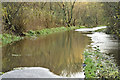 J3470 : Flooded Lagan towpath, Stranmillis, Belfast - November 2015(2) by Albert Bridge