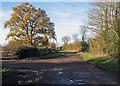 TL3357 : Nearing Bourn in December by John Sutton