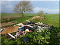 TL3972 : Fly-tipping at the end of West Fen Road by Richard Humphrey