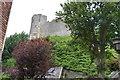 TQ4110 : Lewes Castle by N Chadwick