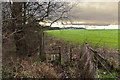 SJ5578 : A stile on the footpath by Beckett's Wood by Ian Greig