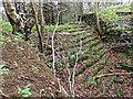 NZ6009 : Kildale old weir by Mick Garratt