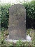 SD7813 : Milestone Bury 2 miles by John Armstrong