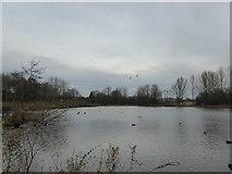SJ8851 : Lake at Ford Green by Jonathan Hutchins