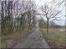 SJ8851 : Footpath beside lake at Ford Green by Jonathan Hutchins
