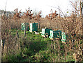TG3711 : Bee hives in Austin's Wood by Evelyn Simak