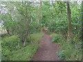 SP3718 : Oxfordshire Way by Shaun Ferguson