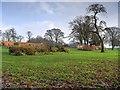 SD8304 : Heaton Park, Western Pleasure Grounds by David Dixon