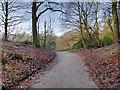 SD8204 : Path into the Dell Gardens, Heaton Park by David Dixon