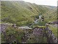 SN8122 : A dam on the stream by Shaun Ferguson