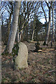 NJ7429 : New Craig Recumbent Stone Circle (10) by Anne Burgess