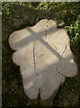 ST6264 : A symbol of death in the church grounds by Neil Owen