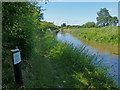 SJ6869 : Trent & Mersey Canal Milepost along the towpath by Mat Fascione