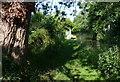 SJ6870 : Site of the former bridge no 180 by Mat Fascione