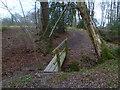 TQ1537 : Footbridge over Letts Gill by Shazz