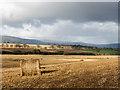 NH6461 : Farmland below the Milbuie Ridge by Dr Julian Paren