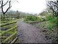 SK0296 : The Longdendale Trail splits in two by Christine Johnstone