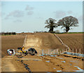 TF8915 : Underground cable traversing fields east of Beeston : Week 7