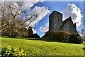 TR1358 : Harbledown: St. Nicholas' Church western aspect : Week 7