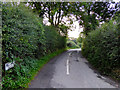 SJ6542 : Mill Lane south of Audlem, Cheshire by Roger  Kidd
