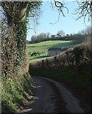 ST7258 : White Ox Mead Farm by Derek Harper