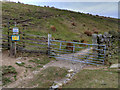 SD6718 : Gate and Stile on the Tacklers' Trail by David Dixon