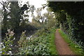 SU6067 : National Cycle Route 4 along the Kennet & Avon Canal by N Chadwick