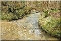 ST7657 : Norton Brook by Derek Harper