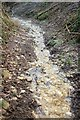 ST7460 : Wet bridleway below Twinhoe by Derek Harper