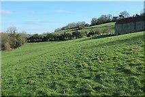 ST7258 : Hillside by White Ox Mead Farm by Derek Harper
