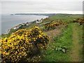 SX3254 : Coast path on Battern Cliff by Philip Halling
