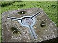 ST5460 : Breach Hill spider by Neil Owen