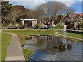 SZ1291 : Fisherman's Walk Pond : Week 16