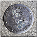 O1434 : Coal hole cover, Dublin by Rossographer