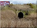 SH4673 : Culvert under the A55 by Oliver Dixon
