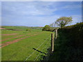 SS8201 : Public footpath running along the edge of a field, just outside Crediton : Week 19