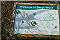 TR1052 : Information Board, Denge Wood by N Chadwick
