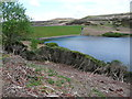 SD9634 : Rhododendrons and dam of Walshaw Dean Upper Reservoir, Wadsworth by Humphrey Bolton
