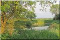 SP8818 : A Field Pond on Alnwick Farm by Chris Reynolds