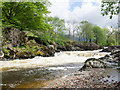 NN1274 : River Nevis with cascade by Trevor Littlewood