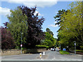 SJ8700 : Wergs Hall Road north-west Wolverhampton by Roger  Kidd