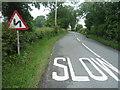 SJ8075 : Sandle Bridge Lane, Marthall by JThomas